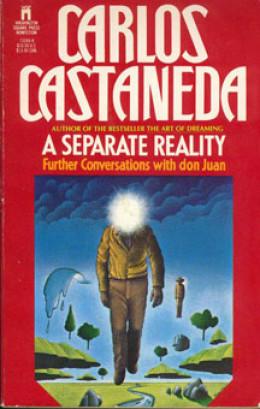 Отдельная реальность: Дальнейшие беседы с доном Хуаном