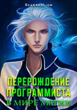 Перерождение Программиста в Мире Магии – Том 1 (вся книга)
