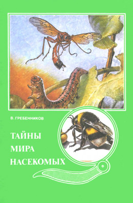 Тайны мира насекомых