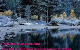 Сказка о Морозко, ягоде клюкве и любви (СИ)