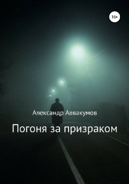 Погоня за призраком