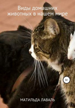 Виды домашних животных в нашем мире