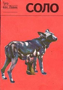 Соло. История щенка гиеновой собаки